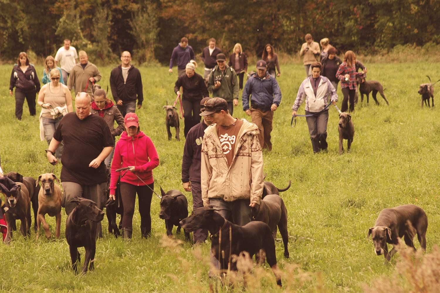 Autumn 2015: Join Us For Our Fall Walk!